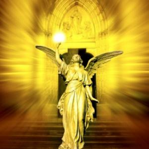 Divine Provision Reiki ™ Niveau 1