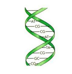 Implant Removal & DNA activation meditation – Enlèvement des implants & Méditation d'activation de l'ADN